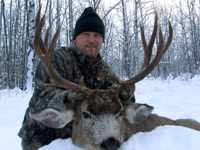An excellent hunter with a positive personality....