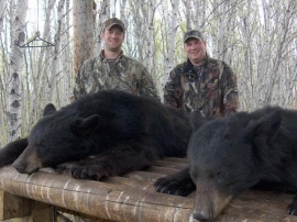 Friends Shauli and Ryan tagged these two bear on there mid May hunt. In addition to harvesting bear they had an adventure I am sure Shauli will remember for some time. Full of stories and providing a camp full of laughs they did their share of entertaining which always makes guiding much more fun. Thanks guys and the best to both of you on any future hunts.